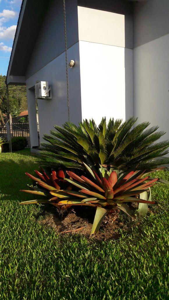 Fotos do imóvel Linda Casa de Esquina Nova Hartz Bairro das Rosas - Sparrenberger Imóveis