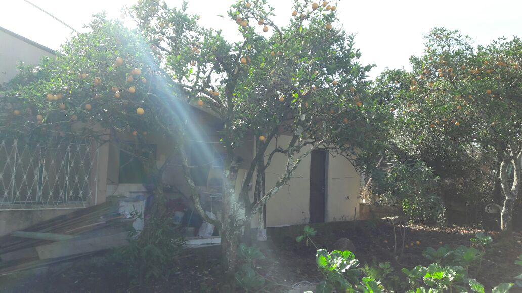 Fotos do imóvel Casa Bairro Centro Nova Hartz - Sparrenberger Imóveis
